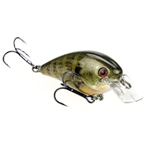 Strike King KVD 1.0 Square Bill Crankbait