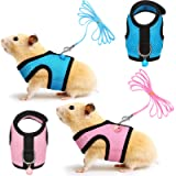 Small Animal Collars, Leashes & Harnesses