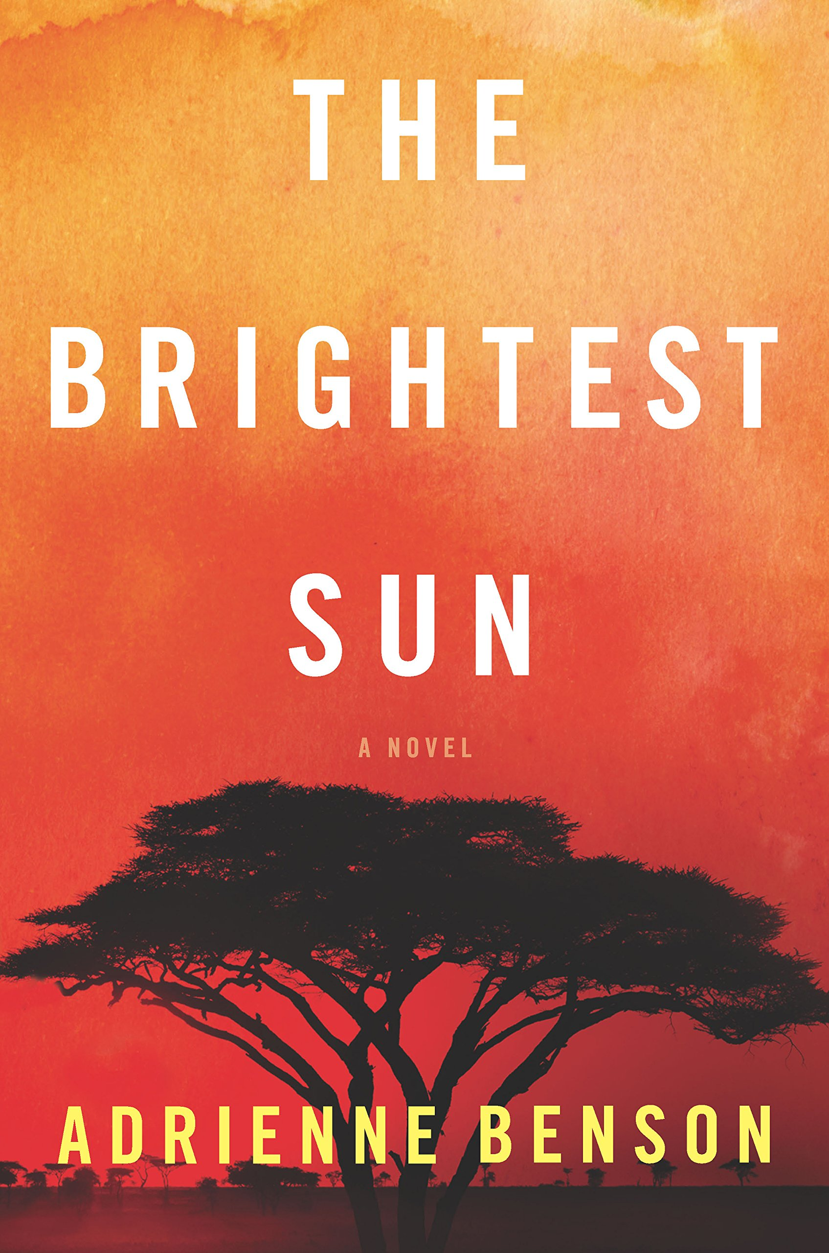 Image result for the brightest sun adrienne benson