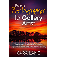 From Photographer to Gallery Artist: The Complete Guide to Finding Gallery Representation for Your Fine Art Photography book cover