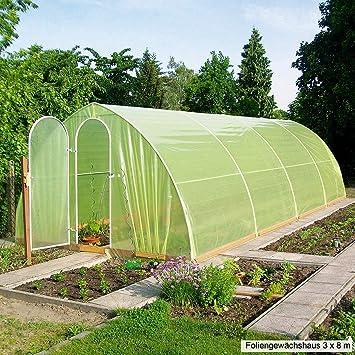 Beckmann Folien Gewachshaus 3 X 12 M Amazon De Garten