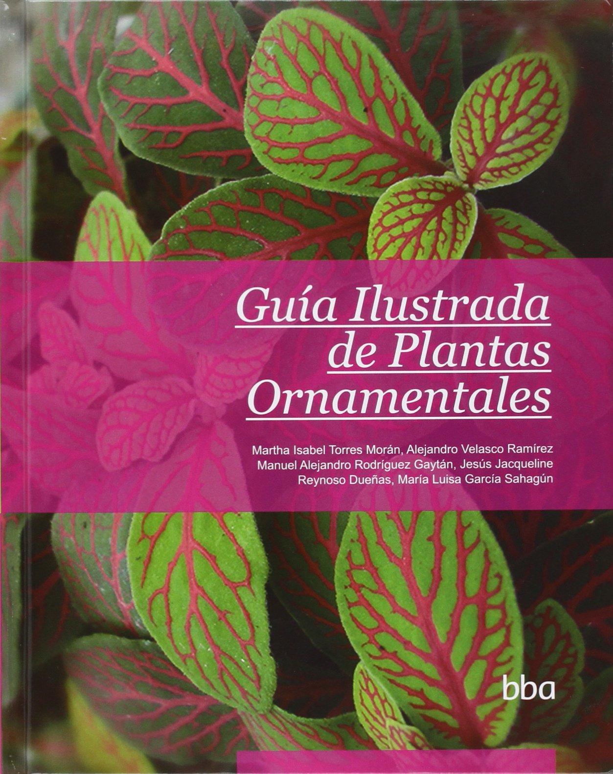 Guía Ilustrada De Plantas Ornamentales: Amazon.es: Torres Morán, Martha Isabel: Libros