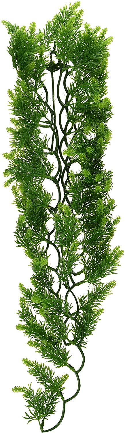 Zoo Med Naturalistic Bush Plant Malaysian Fern, Large by Zoo Med B0002DIUPC