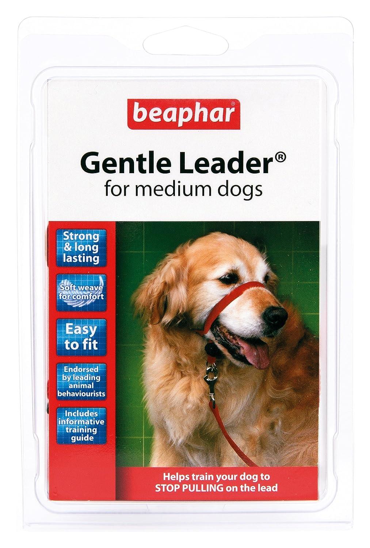 Beaphar Gentle Leader Medium Black: Amazon.co.uk: Pet Supplies