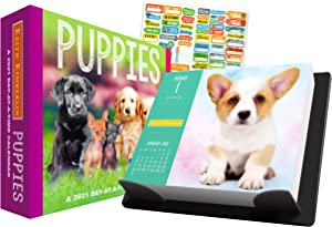 Keith Kimberlin Puppies 2021 Calendar, Box Edition Bundle - Deluxe 2021 Puppies Day-at-a-Time Box Calendar with Over 100 Calendar Stickers (Dog Puppies Gifts, Office Supplies)