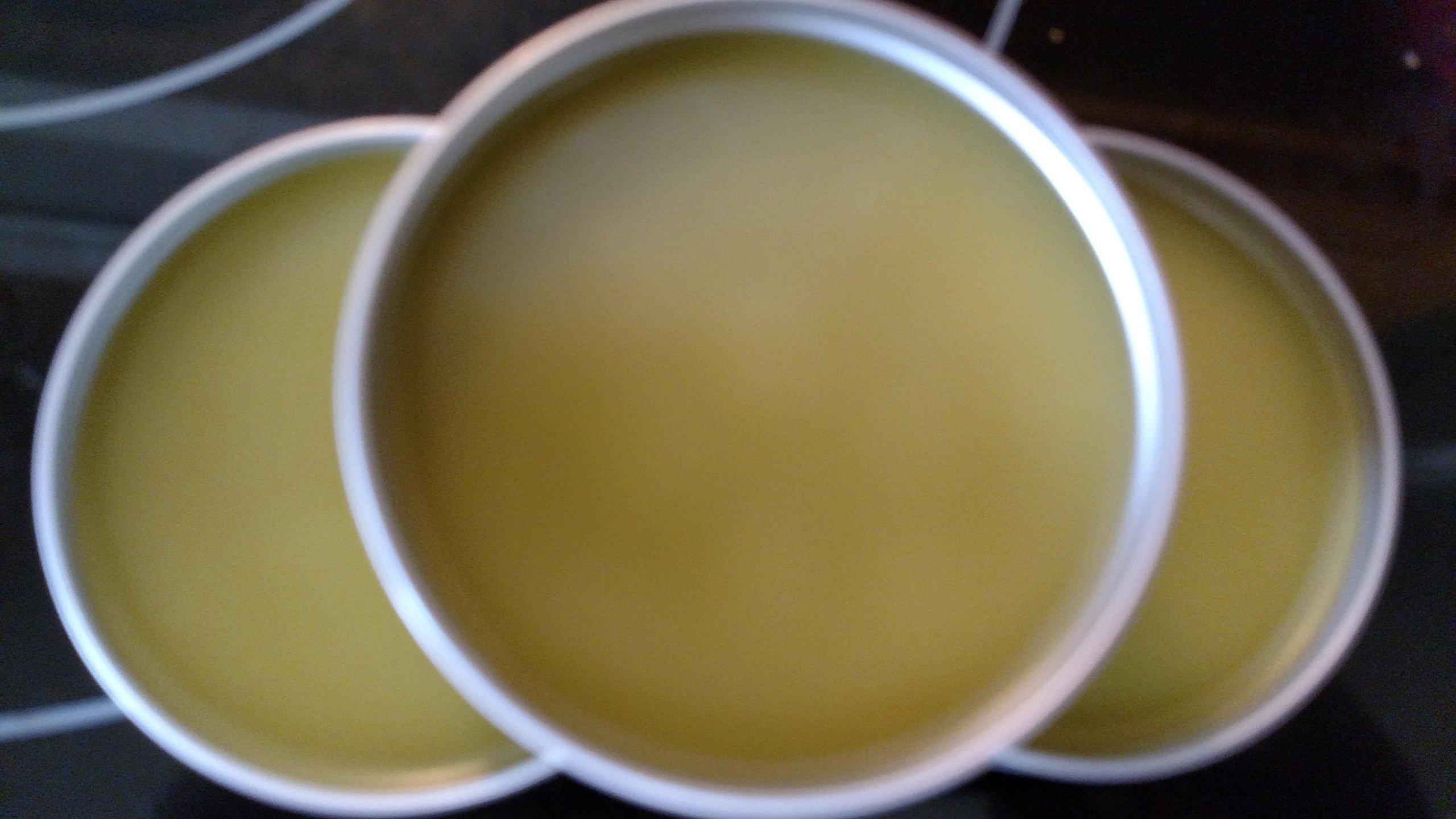 Herbal Hemp Pain Salve with Hemp Oil and Essential Oils, 2oz