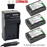 Kastar Battery (3-Pack) and Charger Kit for Sony DVD HandyCam DCR-DVD105 DCR-DVD202E DCR-DVD203 DCR-DVD203E DCR-DVD205 DCR-DVD305 DCR-DVD403 DCR-DVD405 DCR-DVD408 DCR-DVD505 DCR-DVD910 DCR-DVD92