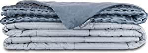 Cooshi Adult Weighted Blanket Queen Size 20 lbs | with Minky Duvet Cover | Cotton 60x80 | Grey Heavy Blanket | Glass Beads | for Adults More Than 160 lbs