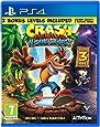 Crash Bandicoot Nsane Trilogy Video Game (PS4)