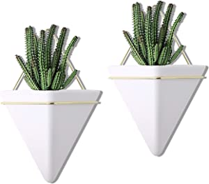PUDDING CABIN Geometric Wall Planter Succulent Wall Decor Small 2 Set Modern Wall Planter for Indoor Plants
