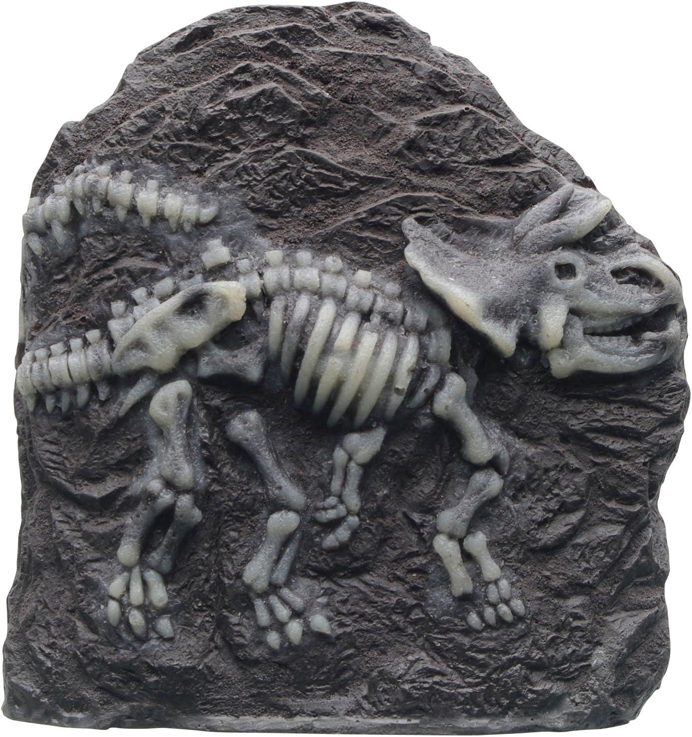 Marina Triceratops Fossil Ornament for Aquarium