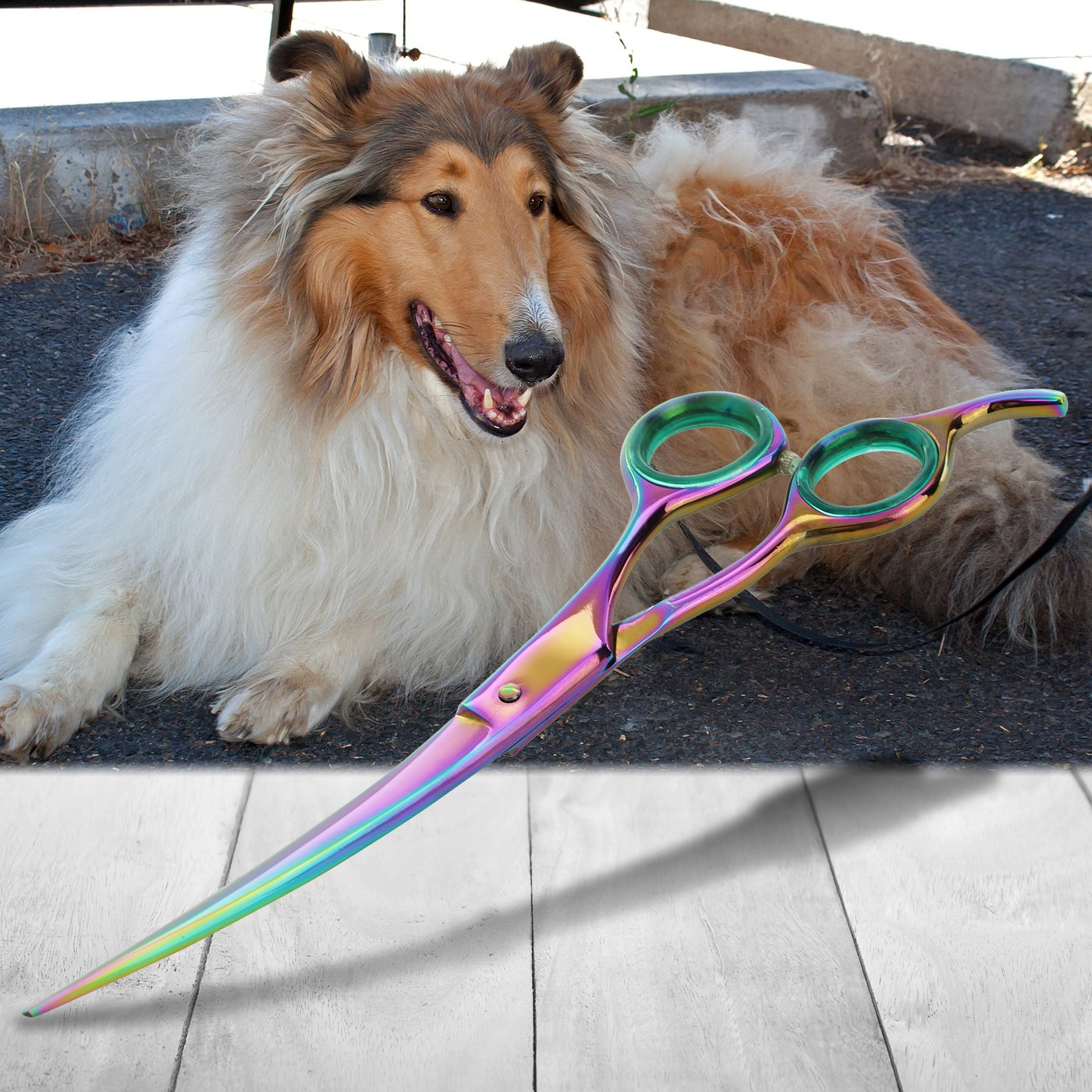SHARF Professional 8.5'' Curved Rainbow Pet Grooming Scissors: Sharp 440c Japanese Clipping Shears for Dogs, Cats & Small Animals  Rainbow Series Hair Cutting/Clipping Scissors w/Easy Grip Handles by SHARF (Image #5)