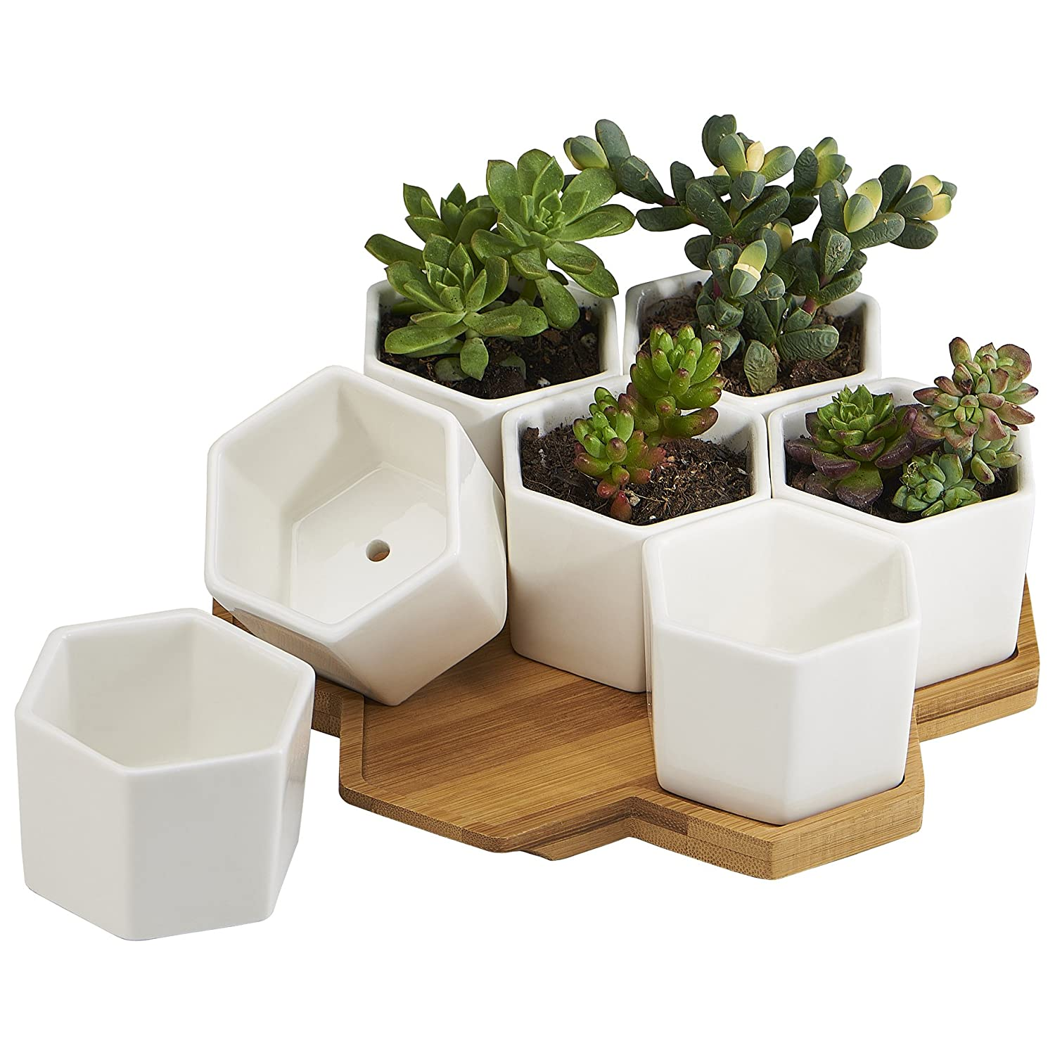FLOWERPLUS Planter Pots Indoor, 7 Pack 2.75 Inch Modern White Ceramic Small Hex Succulent Cactus Flower Plant Pot with Bamboo Tray for Indoors Outdoor Office Home Garden Kitchen Decor (Hexagon)