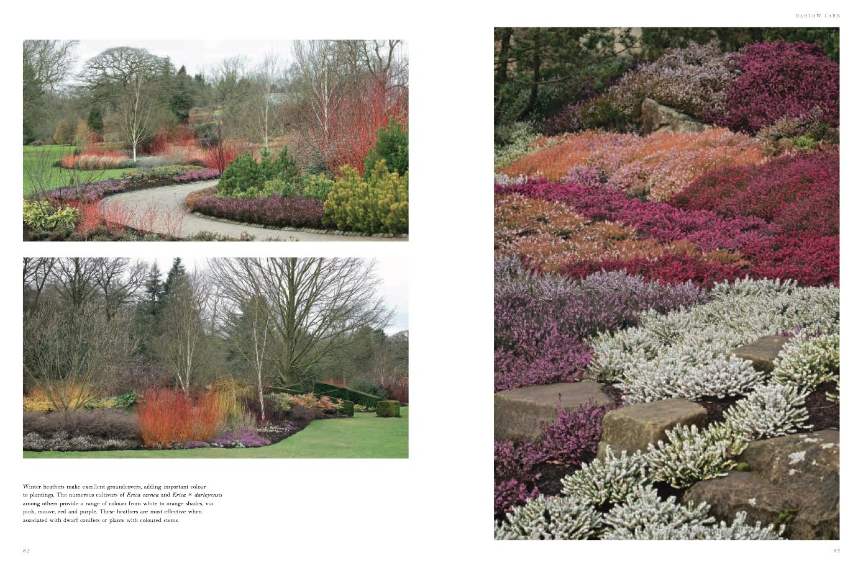 Incroyable Winter Gardens: Reinventing The Season: Cedric Pollet: 9780711239159:  Amazon.com: Books