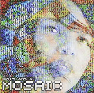Book Cover: The Mosaic Project