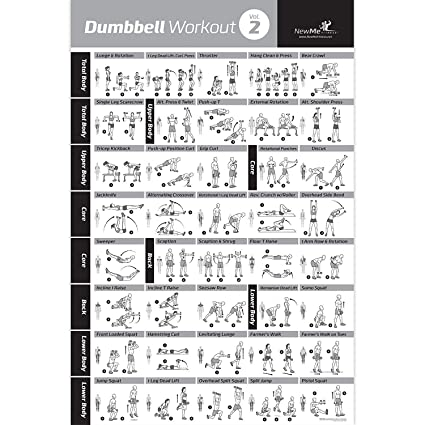 Póster de ejercicios con Mancuernas, Vol.2, laminado (términos en inglés) - Tabla de entrenamiento de fuerza - Construye tono muscular y aprieta los ...