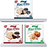 Katz Gluten Free Snacks Mini Pies Variety Pack | Apple, Blueberry, Cherry | Dairy Free, Nut Free, Soy Free, Gluten Free | Kos