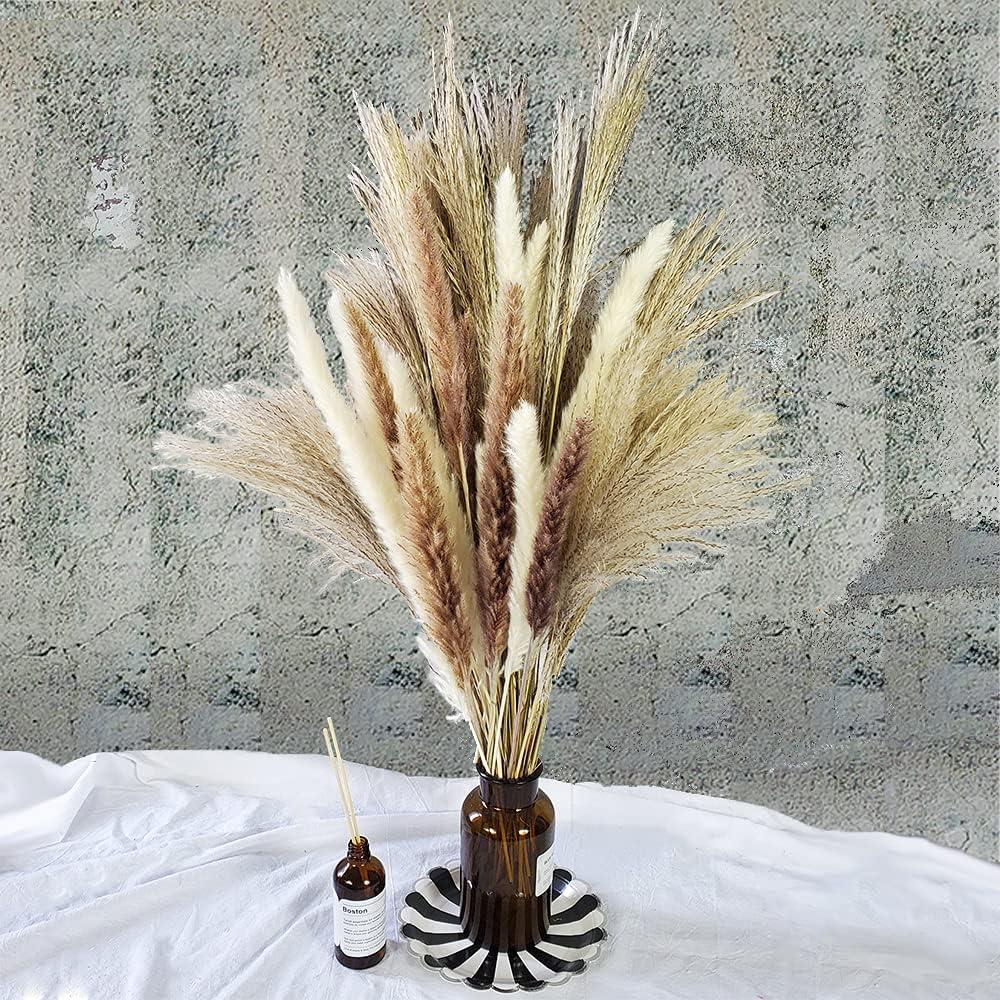 60 Pcs   15 Pcs White Pampas & 15 Pcs Brown Pampas & 30 Pcs Reed Grass/Natural Dried Pampas Grass for Flower Arrangements Home Decor