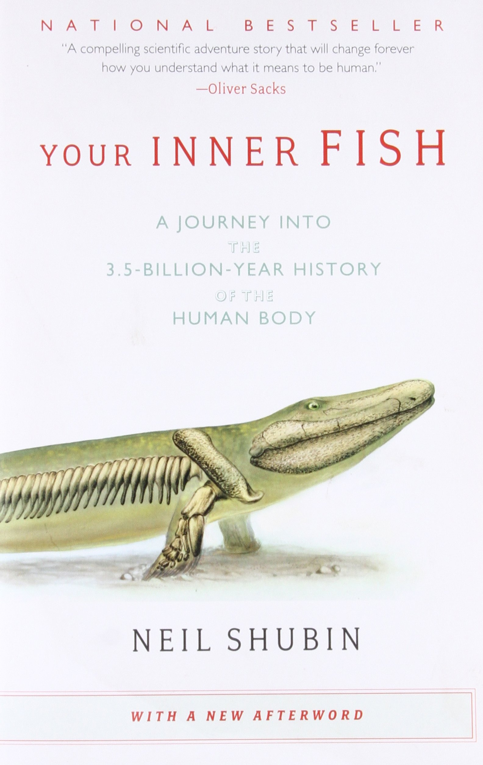 Your inner fish a journey into the 35 billion year history of your inner fish a journey into the 35 billion year history of the human body neil shubin 8601400082775 amazon books fandeluxe Image collections
