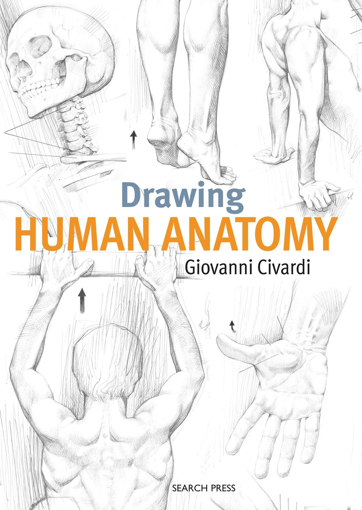 Drawing Human Anatomy Giovanni Civardi 9781782216056 Amazon