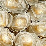 BLAZE ON® Cabbage Rose Fairy Lights (Cream) - 20 LED - Handcrafted Premium Haute Couture Natural Leaf Flowers - UK Plug - Safe Indoor Low Voltage Decorative Lights DC 31V + 1 Year Guarantee
