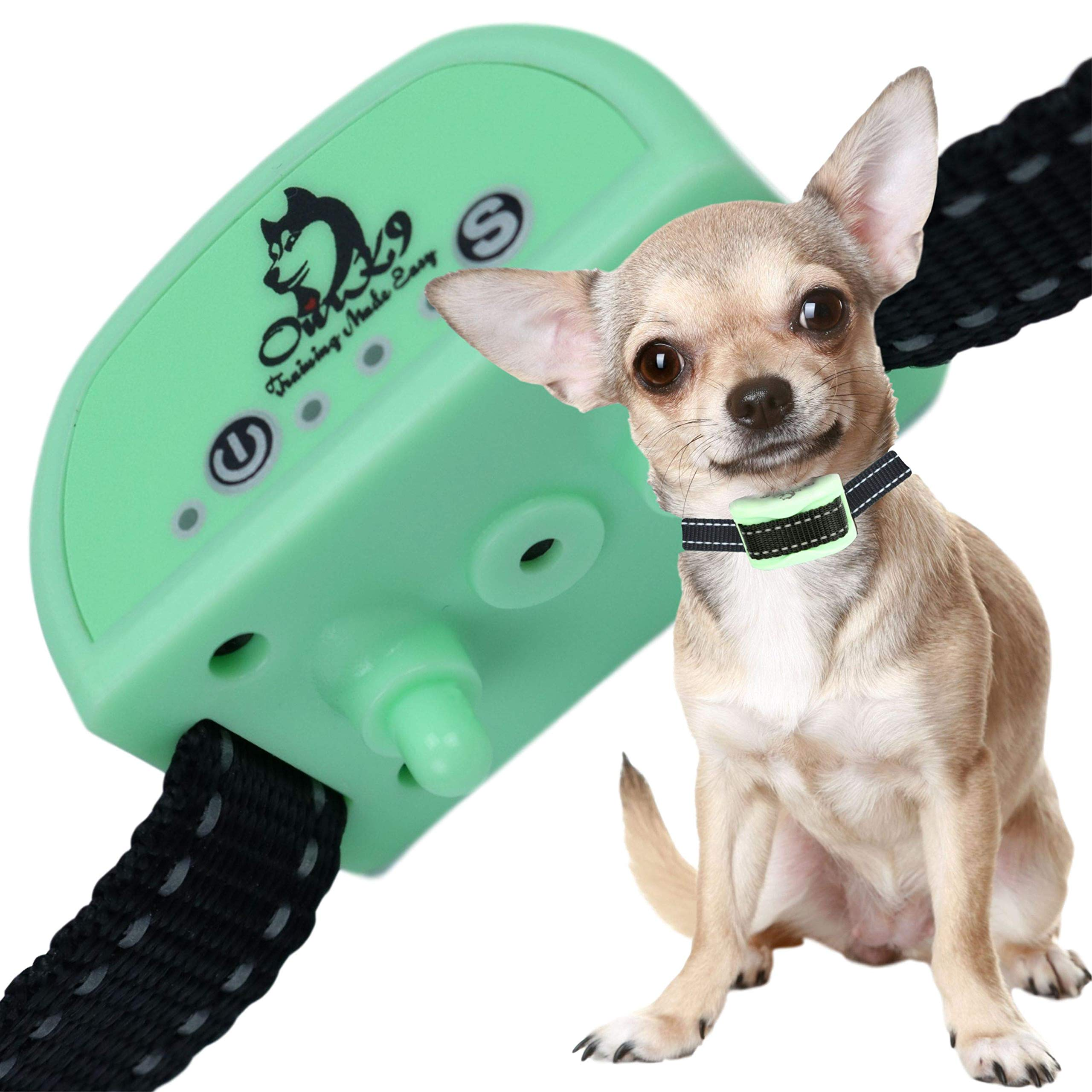 Our K9 Training Made Easy - Mint - Sound & Vibration 100% Pain Free Effective Bark Control for Extra Small to Small Dogs (Not Terriers and Bulldogs)