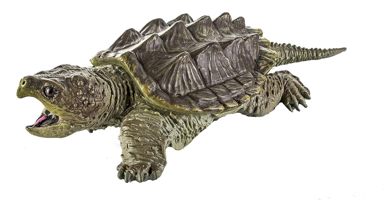 Warning turtles amp tortoises inc - Warning Turtles Amp Tortoises Inc 0