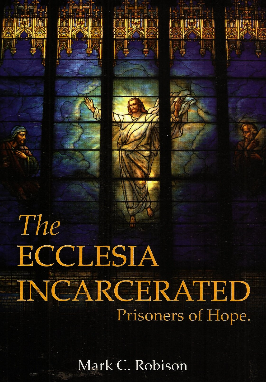 Download The Ecclesia Incarcerated Prisoners of Hope. ebook