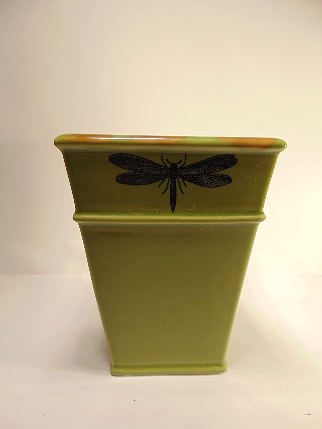 Amazon Com 6 Green Dragonfly Vase By Pier 1 Imports Home Kitchen