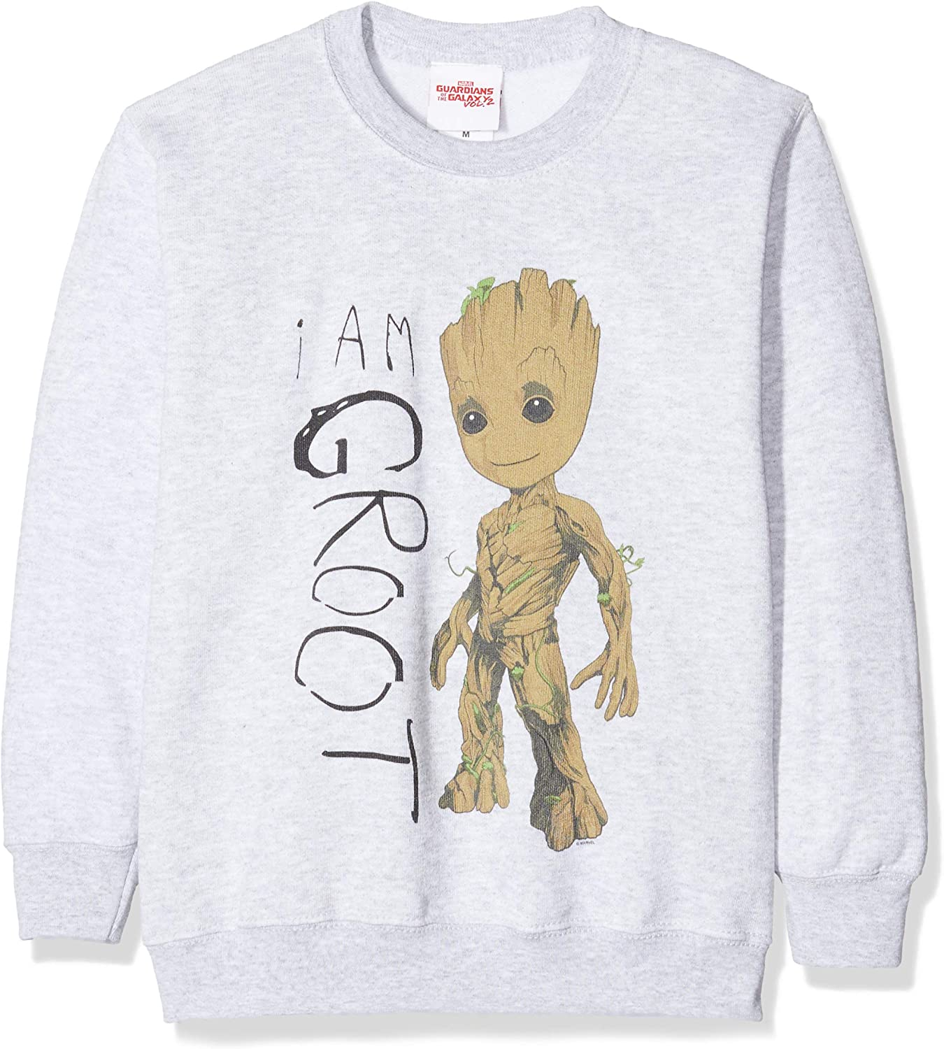 Grey 12-13 Years Sports Grey SpGry Size:12-13Y MARVEL Girls Guardians of The Galaxy Vol.2 I Am Groot Scribbles T-Shirt