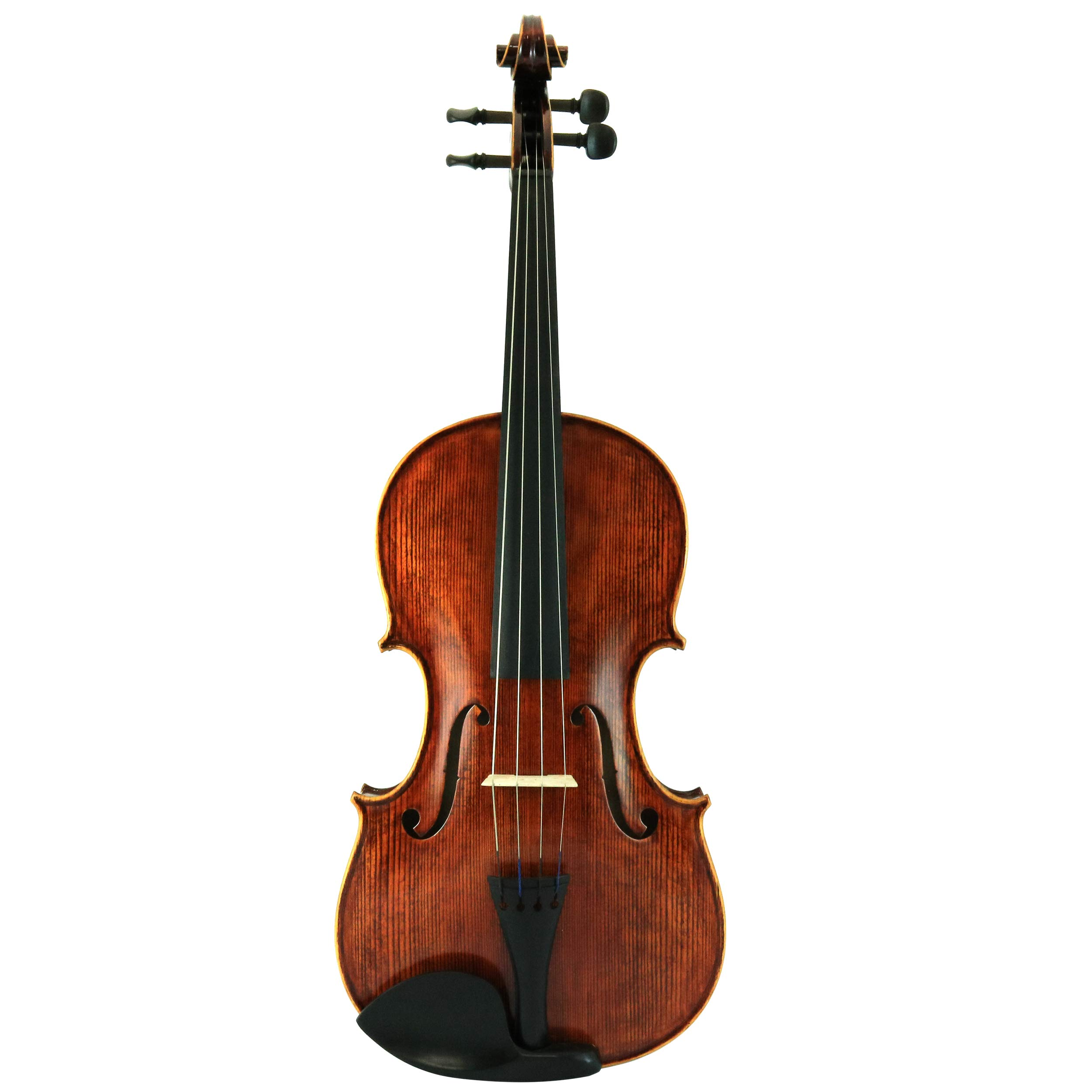 D'Luca PD02-16 16-Inch Orchestral Series Handmade Viola Outfit
