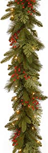National Tree Company Company 'Feel Real' Pre-lit Artificial Christmas Garland | Flocked with Mixed Decorations and White Lights | Classical Collection, 9 ft