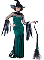California Costumes Women's The Grand Sorceress Costume