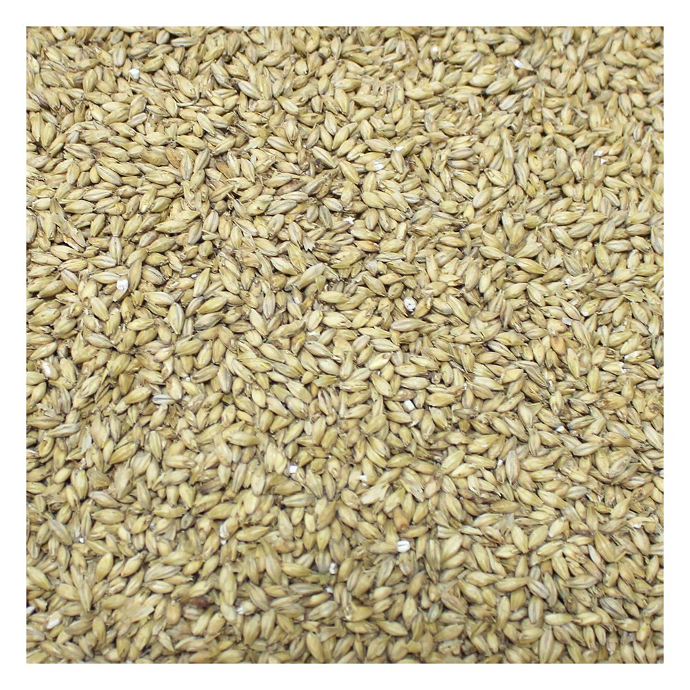 Briess 2-Row Brewers Malt For Home Brewing-50 Lbs. by Briess Malt (US) (Image #3)