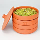 hawos Toni Terracotta Sprouter Clay Sprouting Pot