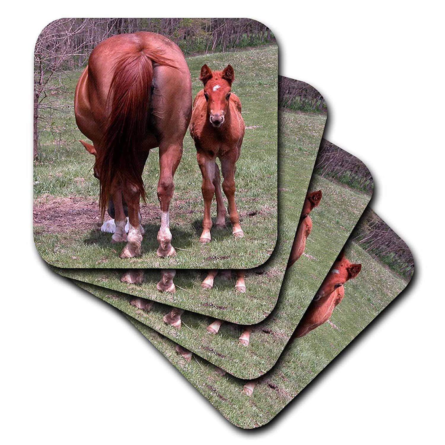 3dRose CST/_11570/_1 The End and The Beginning Horse with Baby Soft Coasters Set of 4