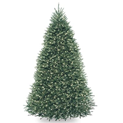 9 pre lit dunhill blue fir hinged artificial christmas tree clear lights - Christmas Tree Blue