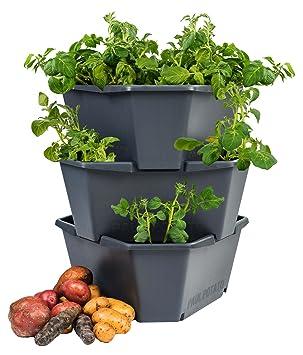 Gusta Garden Paul Potato Outdoor Blumentopf Anthrazit Hoch Aus