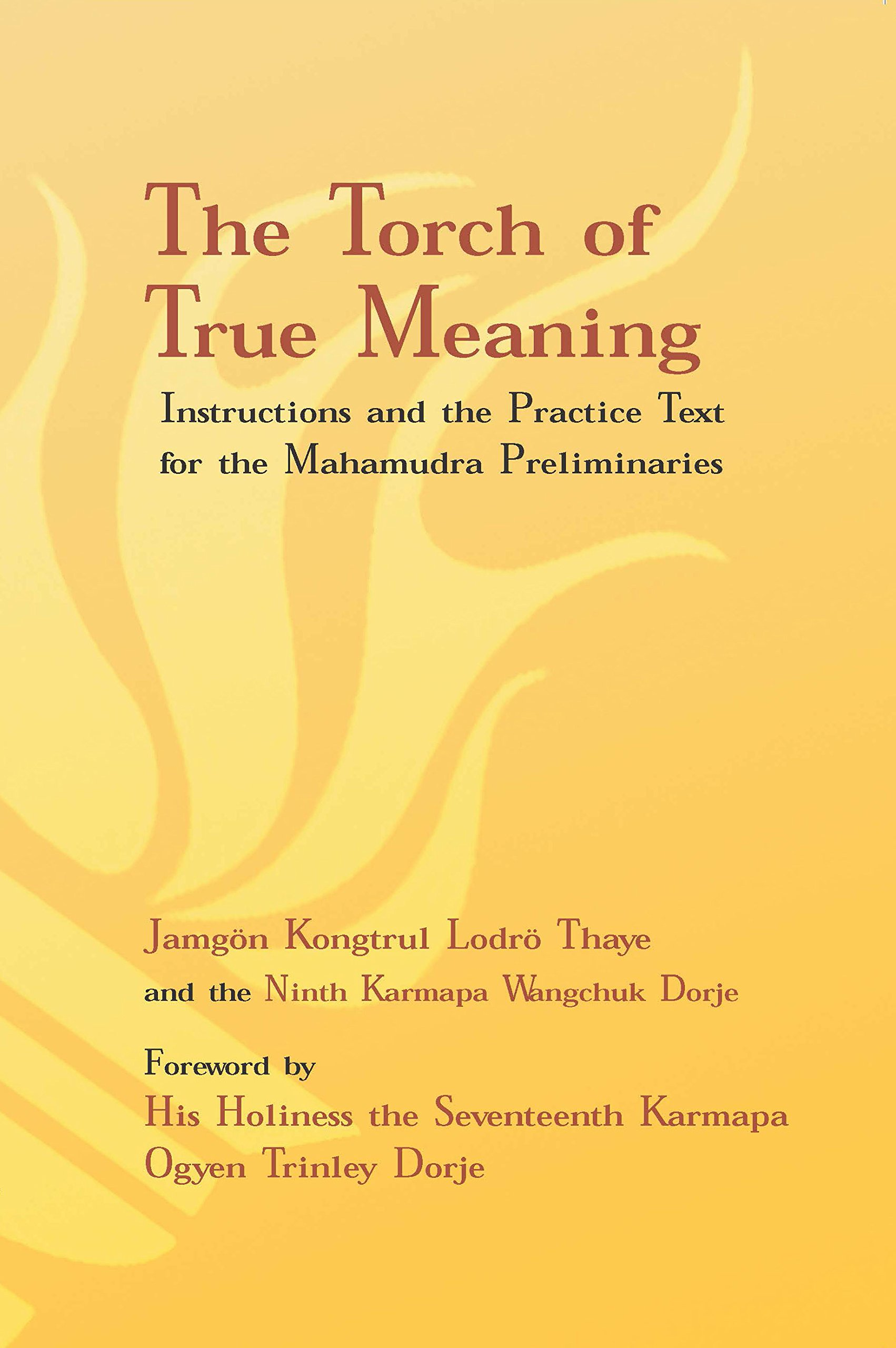 Amazon Torch Of True Meaning Instructions And The Practice For