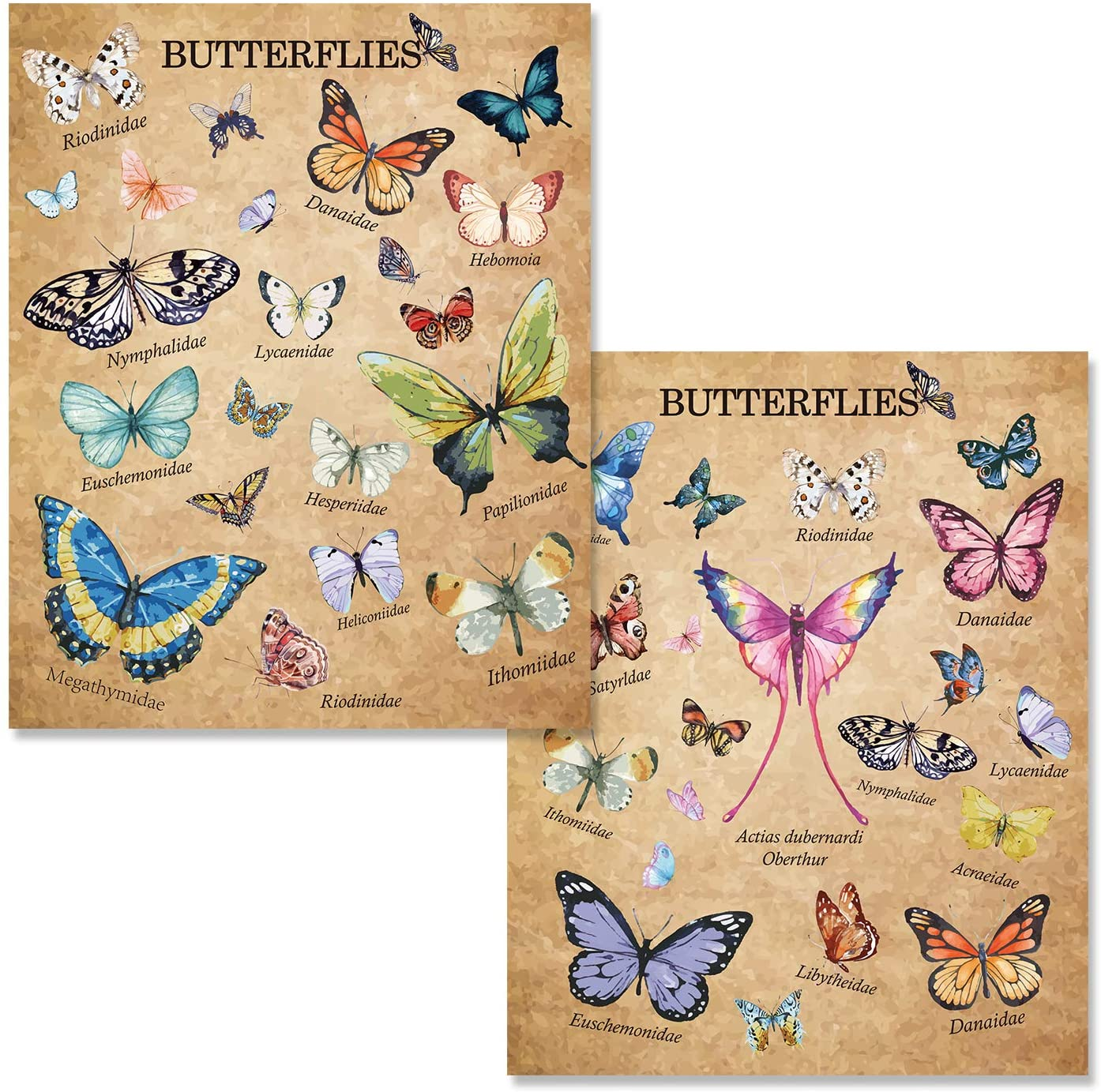 """Vintage Butterfly Poster Wall Decor for Bedroom, Vintage Papillons Butterflies Collection Wall Art Aesthetic Home Office Living Room Decor for Girls, 11"""" x 14"""",Unframed"""