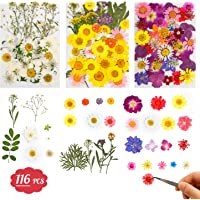 Dried Flowers-116 PCS Natural Dried Flower Herbs Kit for Bath, Soap Making, Candle Making and Resin Jewelry Making Art…