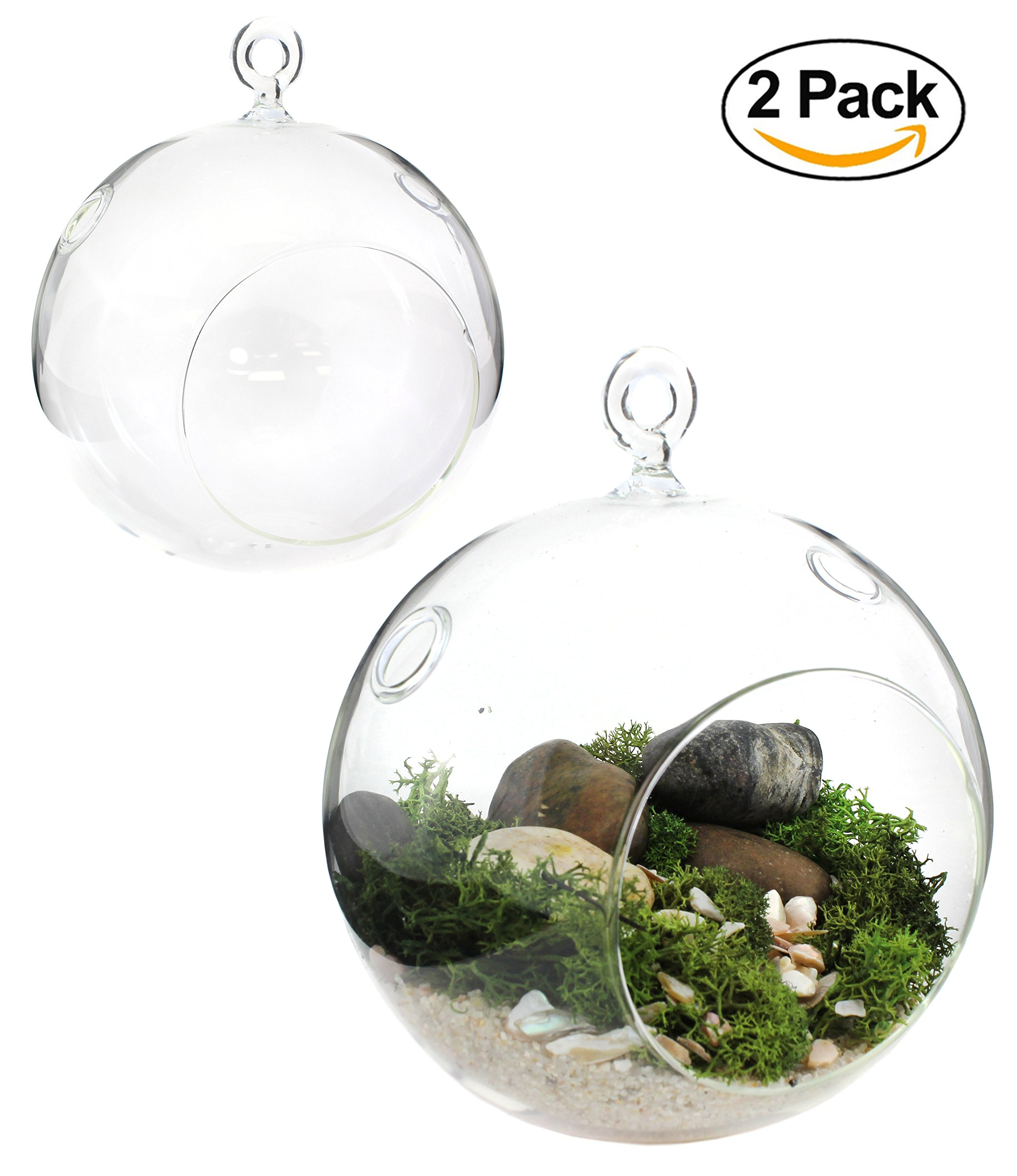 2-Pack Round Glass Terrariums for Succulents & Air Plants 6.5'' x 5'', Large Globe Orb Planters