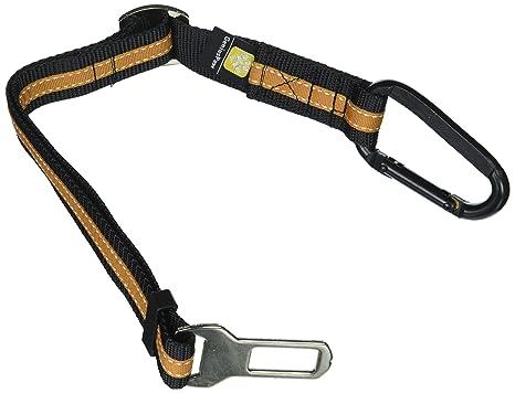 Genius Paw, cinturón de Seguridad para Perro o Gato, estándar ...