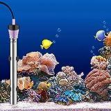 ANVAVA 200W Aquarium Heater, Stainless Steel