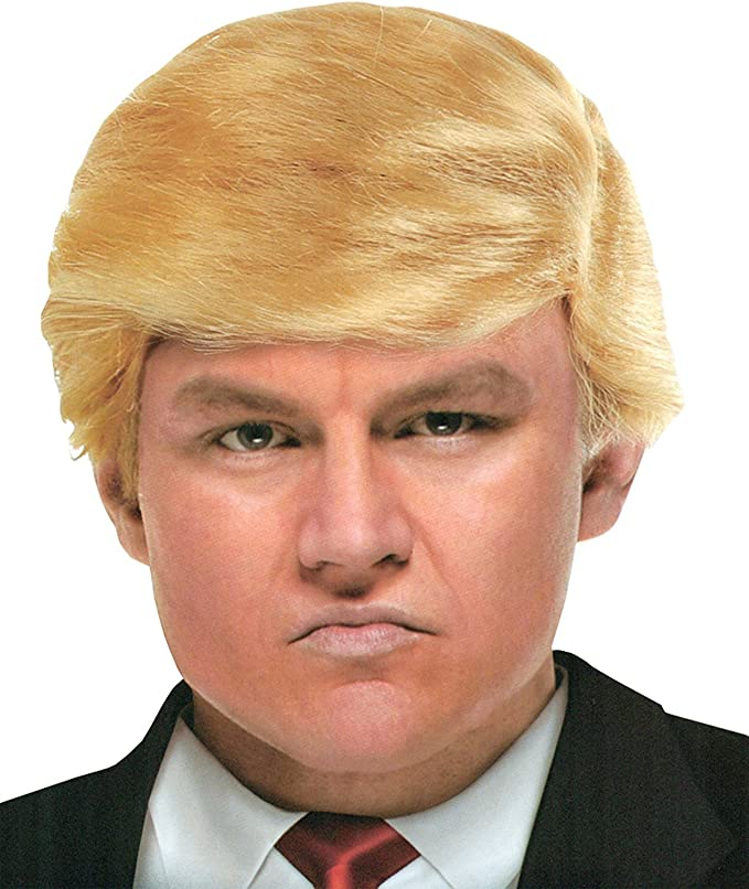 Mr. president Donald Trump Costume wig hair style: Amazon.es ...