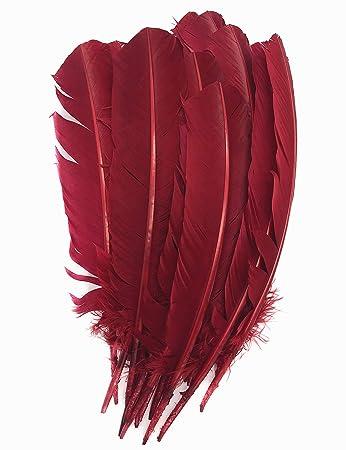 295b7450ed0f8c ERGEOB 20 stück Truthahnfedern basteln Federn Bogen Federn 20-30cm (08 Rot)