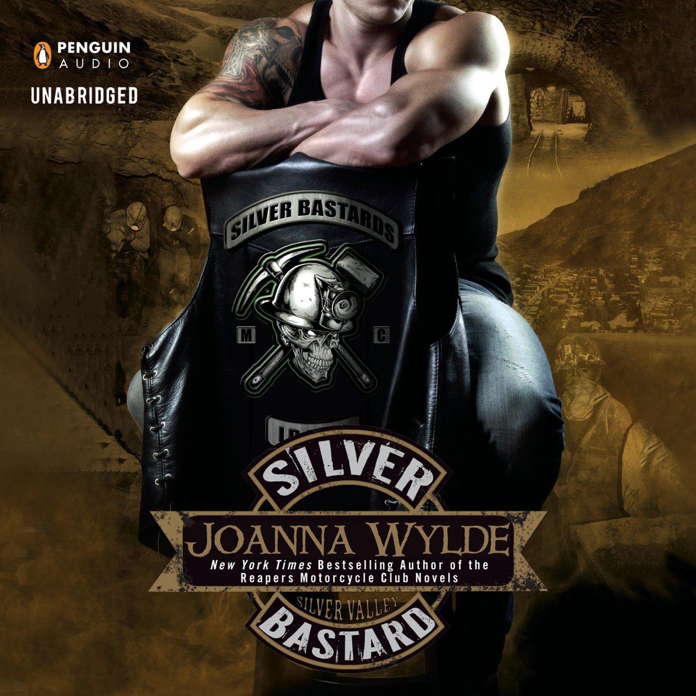 Silver Bastard: Silver Valley, Book 1