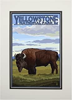 product image for Yellowstone National Park, Wyoming - Bison Scene (11x14 Double-Matted Art Print, Wall Decor Ready to Frame)
