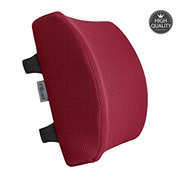 Purple Feiw Memory Foam Lumbar Support Back Cushion with 3D Mesh Cover Balanced Firmness for Lower Back Pain Relief Ideal Back Pillow for Office Chair and Car Seat