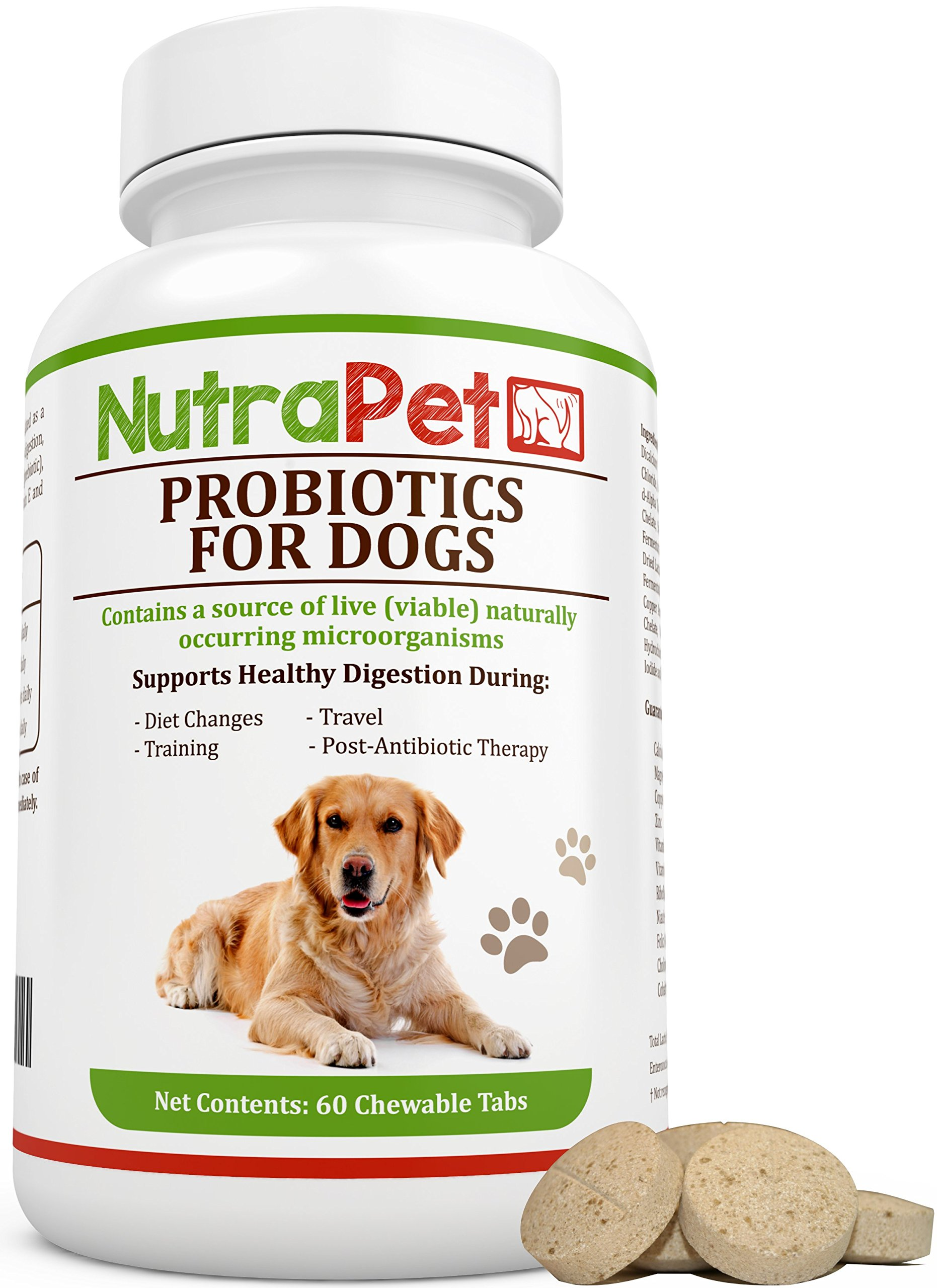 NutraPet Probiotics for Dogs Chewable, Best for Smelly Gas and Diarrhea Relief Plus Added Prebiotic and Vitamins Only, Controls Stomach Upset, Itching, Hot Spots, 120 Tabs by NutraPet